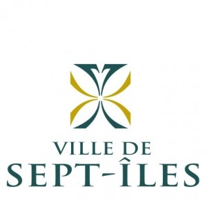 logo_VSI
